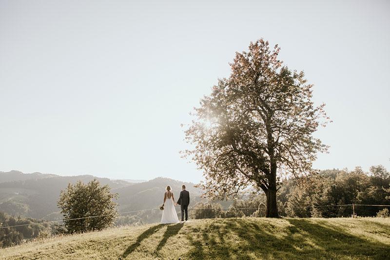 poroka na kmetiji laniše