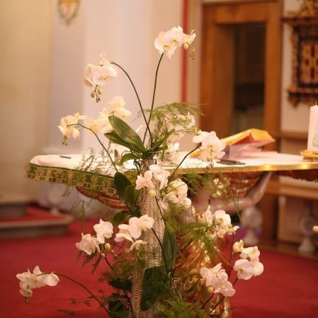 cvetličarna gašperlin