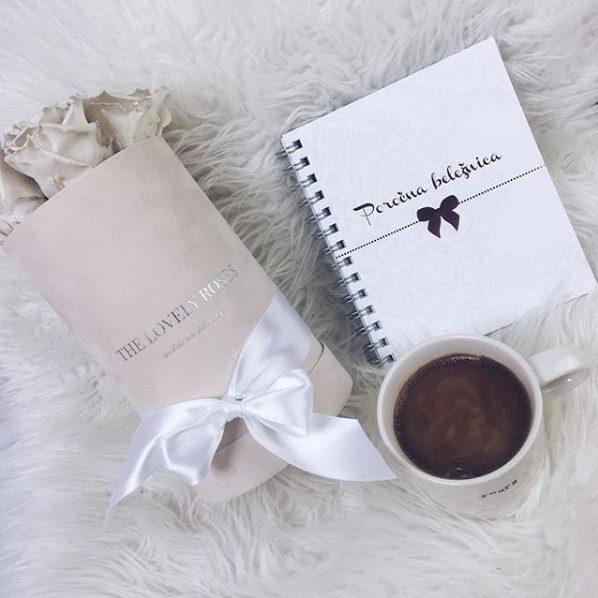dnevnik bodoče neveste