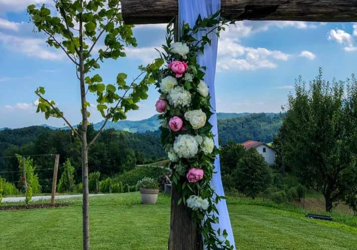 poroka v hiši vin doppler