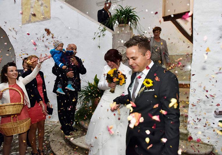 poroka na kozjanskem dvoru
