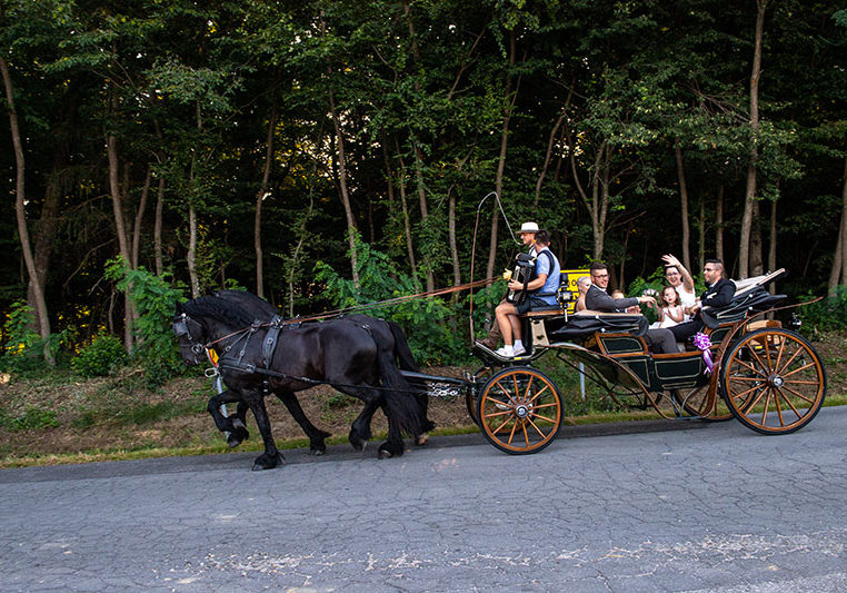 prevoz poroke s kočijo