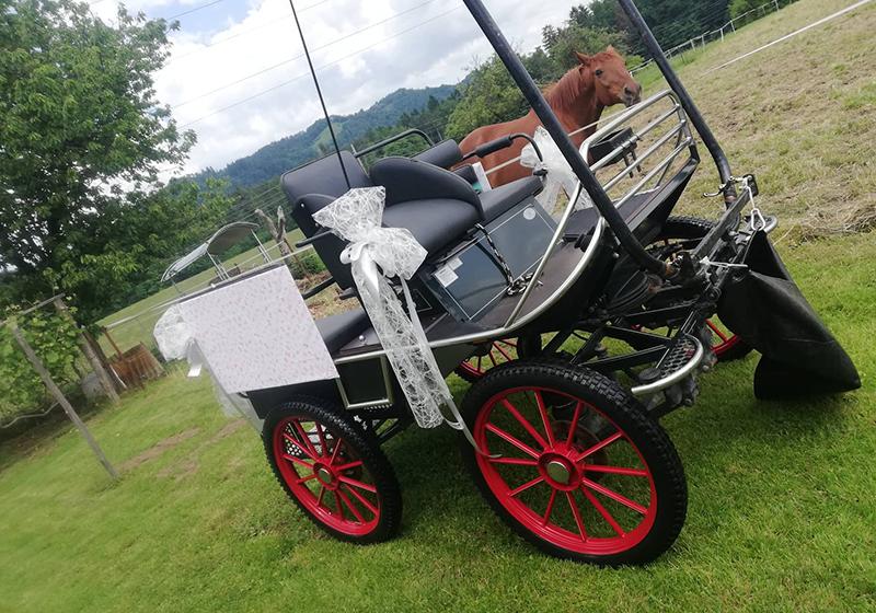 prevoz s kočijo na poroko
